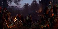 Tribu ewok no identificada