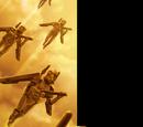 Cuerpos Aéreos