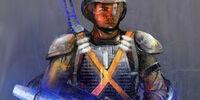 Milicia de Kota