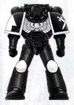 Sable Swords Battle-Brother.jpg