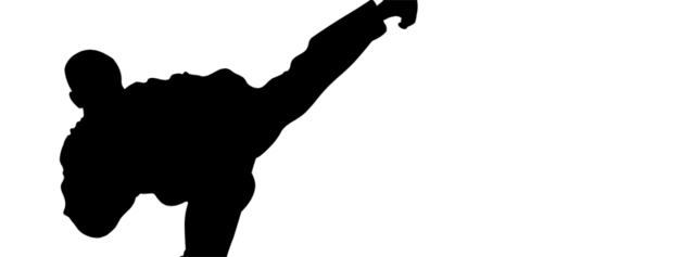 Archivo:Taekwondowiki.png