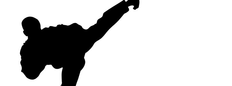 Taekwondowiki.png