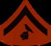 Litus insignia
