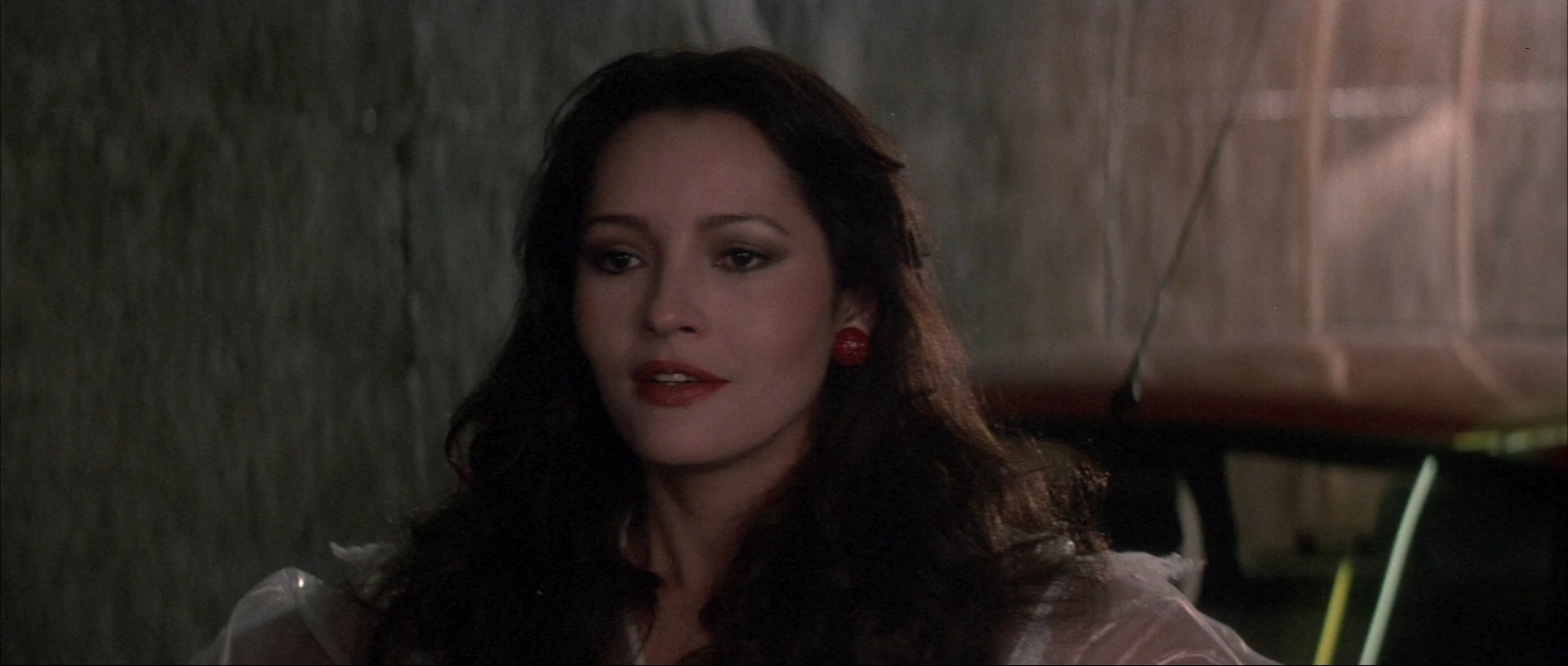 barbara carrera hot