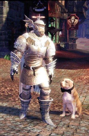 File:Knothole Knight Armour.jpg
