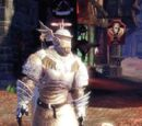Knothole Knight Armour