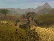 Field of Wheat(Beta)