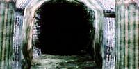 Wellspring Cave