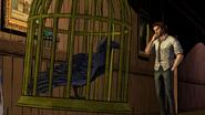 CW Imprisonment