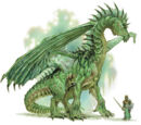 Grüne Drachen
