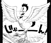 Lisanna as a bird