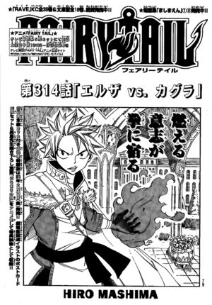 Cover 314
