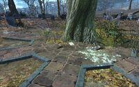 Total Hack Wildwood cemetery