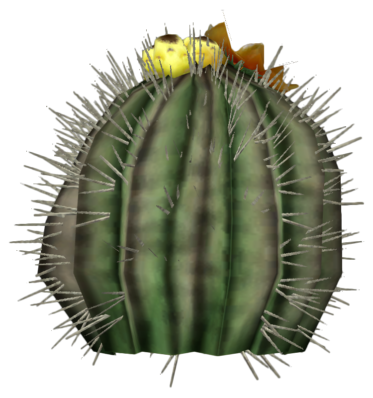 Barrel Cactus Barrel Cactus Fruit · Barrel