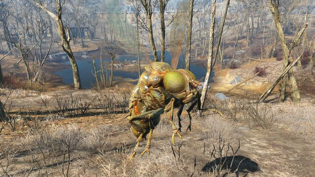 File:FO4 Festering bloatfly.jpg