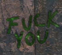 FoNV Fuck You