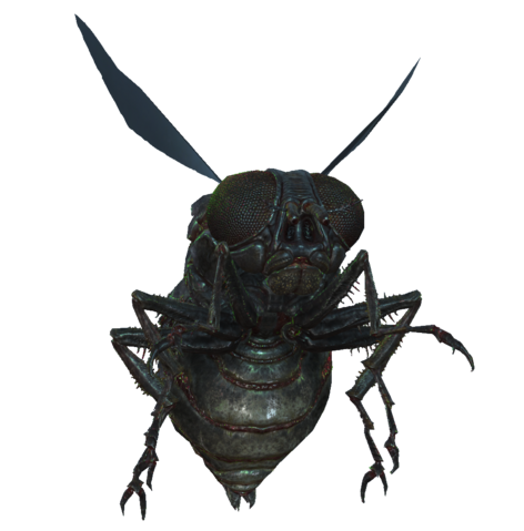 File:Bloatfly fo4.png