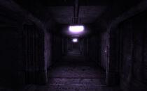 Vault 106 hallucination corridor