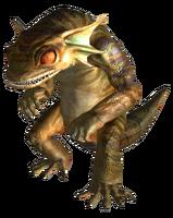 FNV GGecko