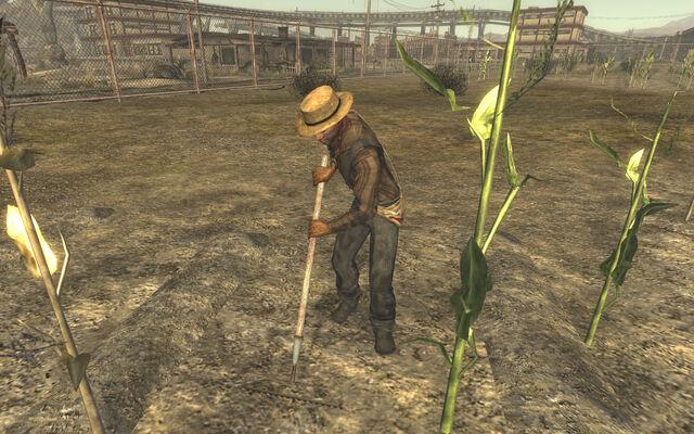 File:FNV sharecropper.jpg
