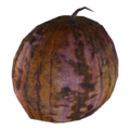 Institute gourd.png