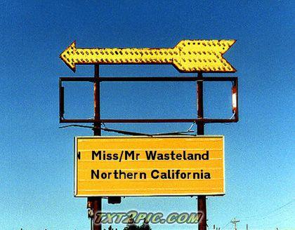 File:MissMrWastelandNorthCA.jpg