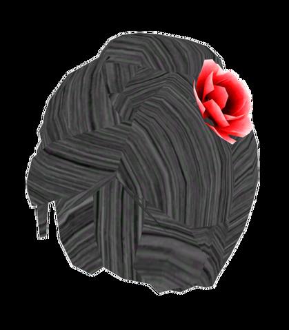 File:Starlet wig.png