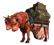 Hoff's and Wolfgang's pack brahmin