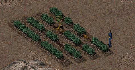 File:Weeding out.jpg