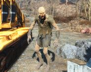 FO4-Feral Ghoul
