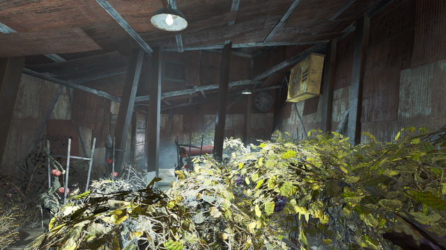 File:FO4--Greenhouse-Diamond City Market-Interior.png