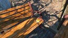 Groundskeeper's log