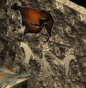 File:Raider Art3.png