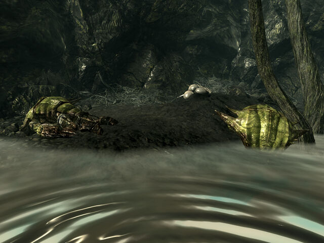 File:Swamplurks Bog.jpg