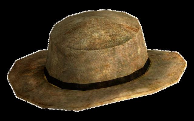 File:Rawhide cowboy hat.png