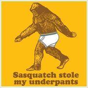 User BigfootUndies