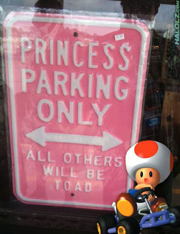 File:Princess-parking-only.jpg