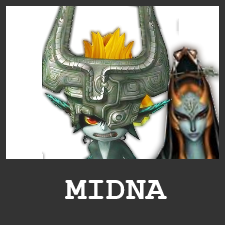 MIDNA ICONE