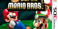 New Super Mario Bros. Hotel
