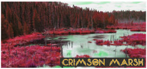 Crimson Marsh