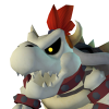 Dry Bowser MKO