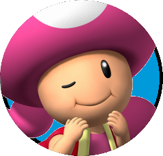 File:ToadettePowerz.png