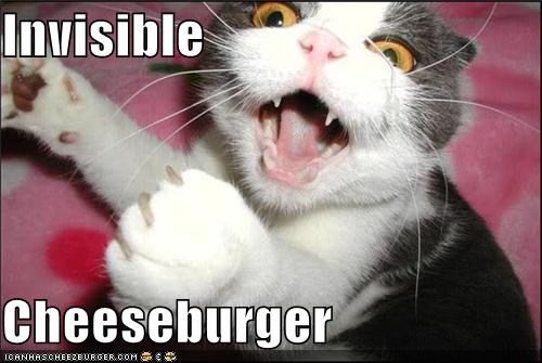 File:InvisibleCheezburger.jpg