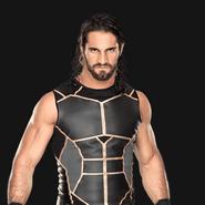 Seth Rollins pro