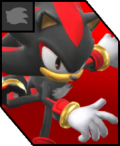 ShadowtheHedgehogVersusIcon