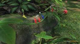 Pikmin Jungle
