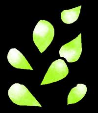 Seeds Mithril