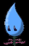 Water Flower New