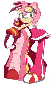 Amy Sonic Riders1
