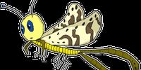 Moptera (SG7)